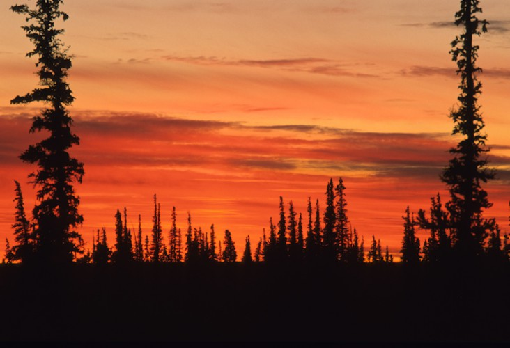 Arctic Sunset, N.W. Territories, Canada
