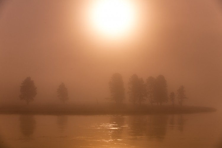 Foggy morning on the Yellowstone river, Wyoming, U.S.A.