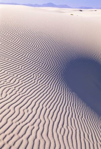 Wind's Sculptures, White Sands N.P., New Mexico, U.S.A.