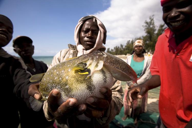 Vilankulo's Fishermans, Mozambico