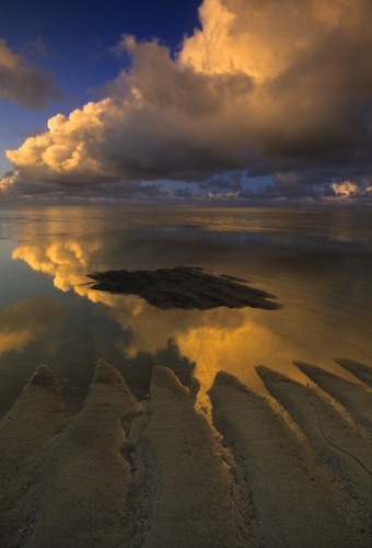 Low Tide, Mauritius Island, Indian Ocean