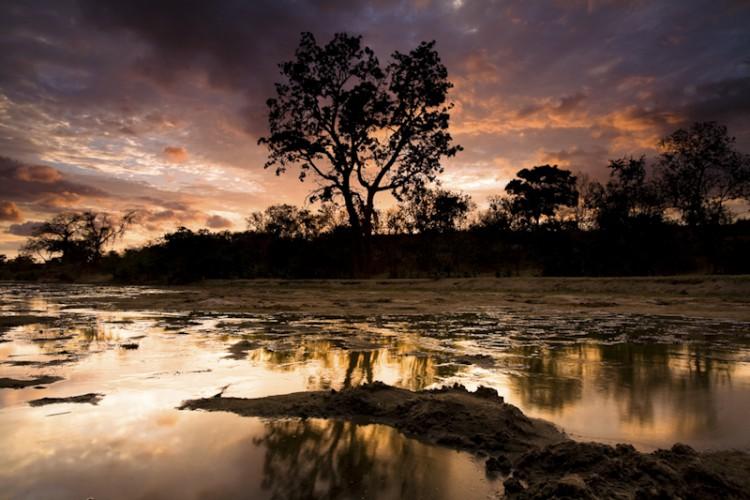 Sunrise, Chitake, Mana Pools N.P., Zimbabwe, Southern Africa