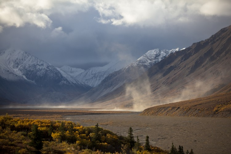 Northern Winds-Toklat Area-Denali N.P.-Alaska