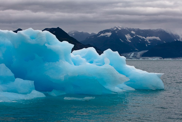 Icebergs and Columbia Glacier-Kenai-Alaska