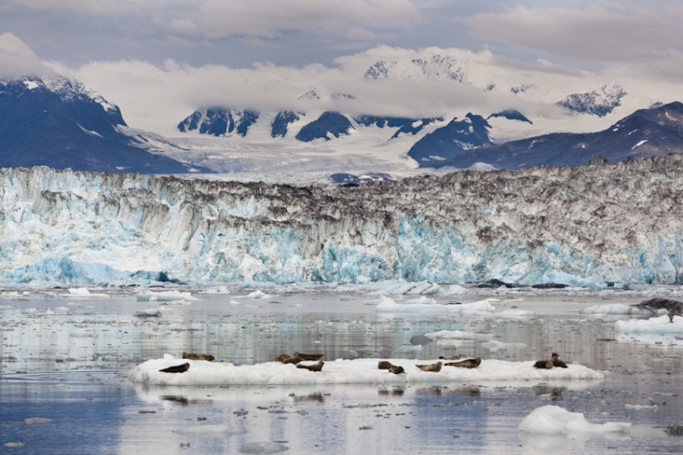 Columbia Glacier-Prince William Sound-Kenai Peninsula-Alaska