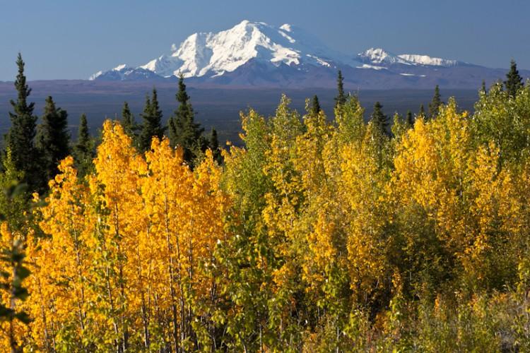 Mt Sanford-Wrangell-St.Elias N.P.-Alaska