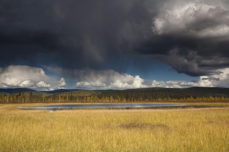 Tetlin Lowlands-Alaskan Interior