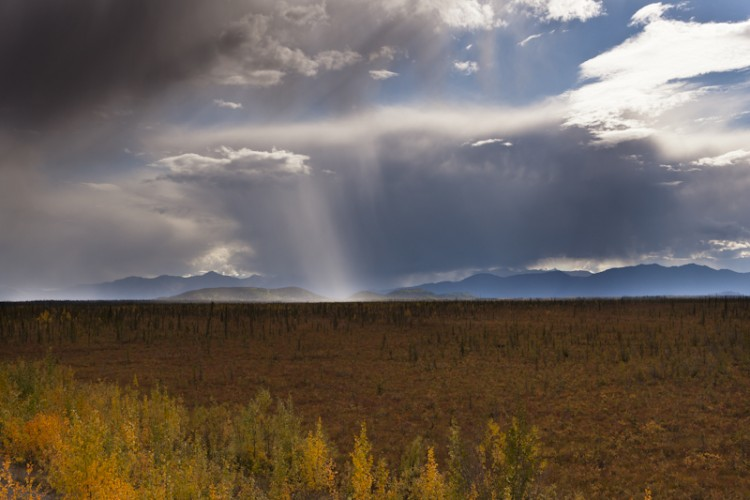 Showers on Tetlin Lowlands-Alaskan Interior