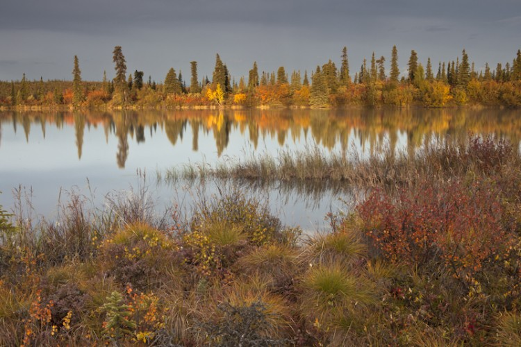 Jack Lake - Nabesna Road-Wrangell- St. Elias N.P.-Alaska