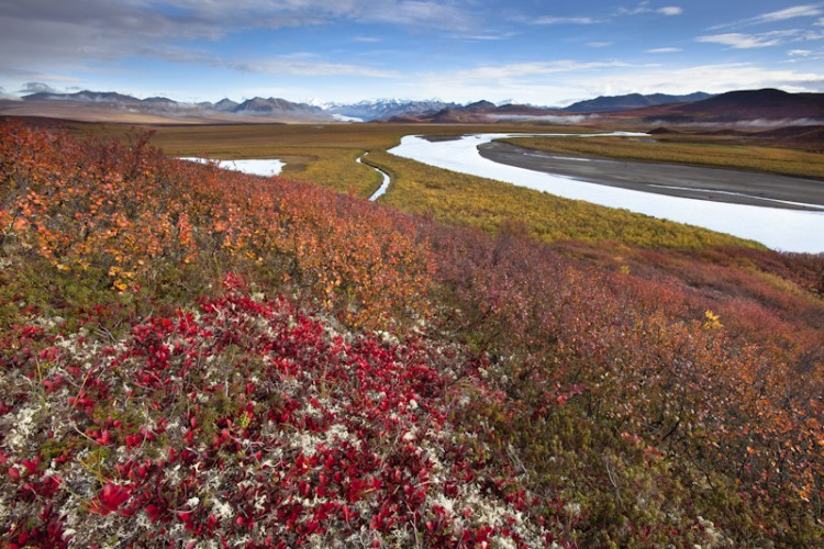 Alaska Range and Maclaren River-Alaskan Interior